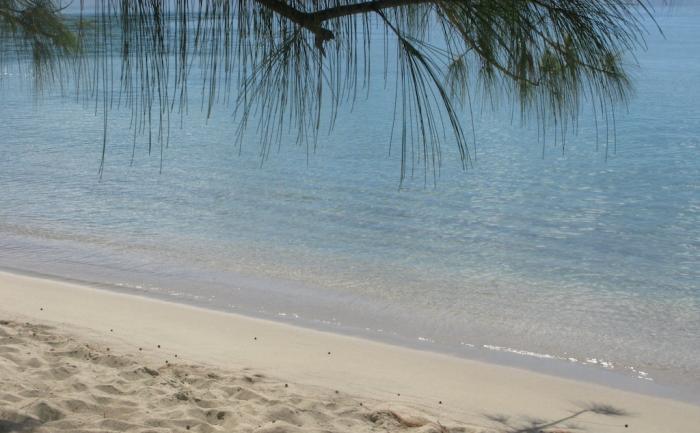 Le calme de Grand Anse d'Arlet